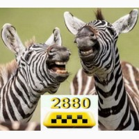 Такси Одесса недорого комфортно по 2880