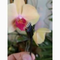 Переходник USB Type-C на Мini jack 3.5 мм